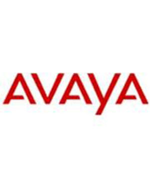 Avaya WT9610 DECT Telephone - Dect Phone (Refurbished)
